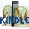 kindle eye