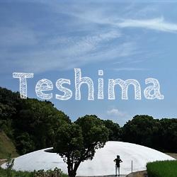 瀬戸内国際芸術祭2016 豊島美術館周辺の景色がご褒美