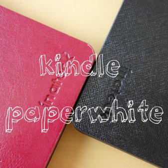 オトナシブいKindle paperwhite用ケースを見つけた